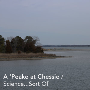 A 'Peake at Chessie Link Science...Sort of Podcast